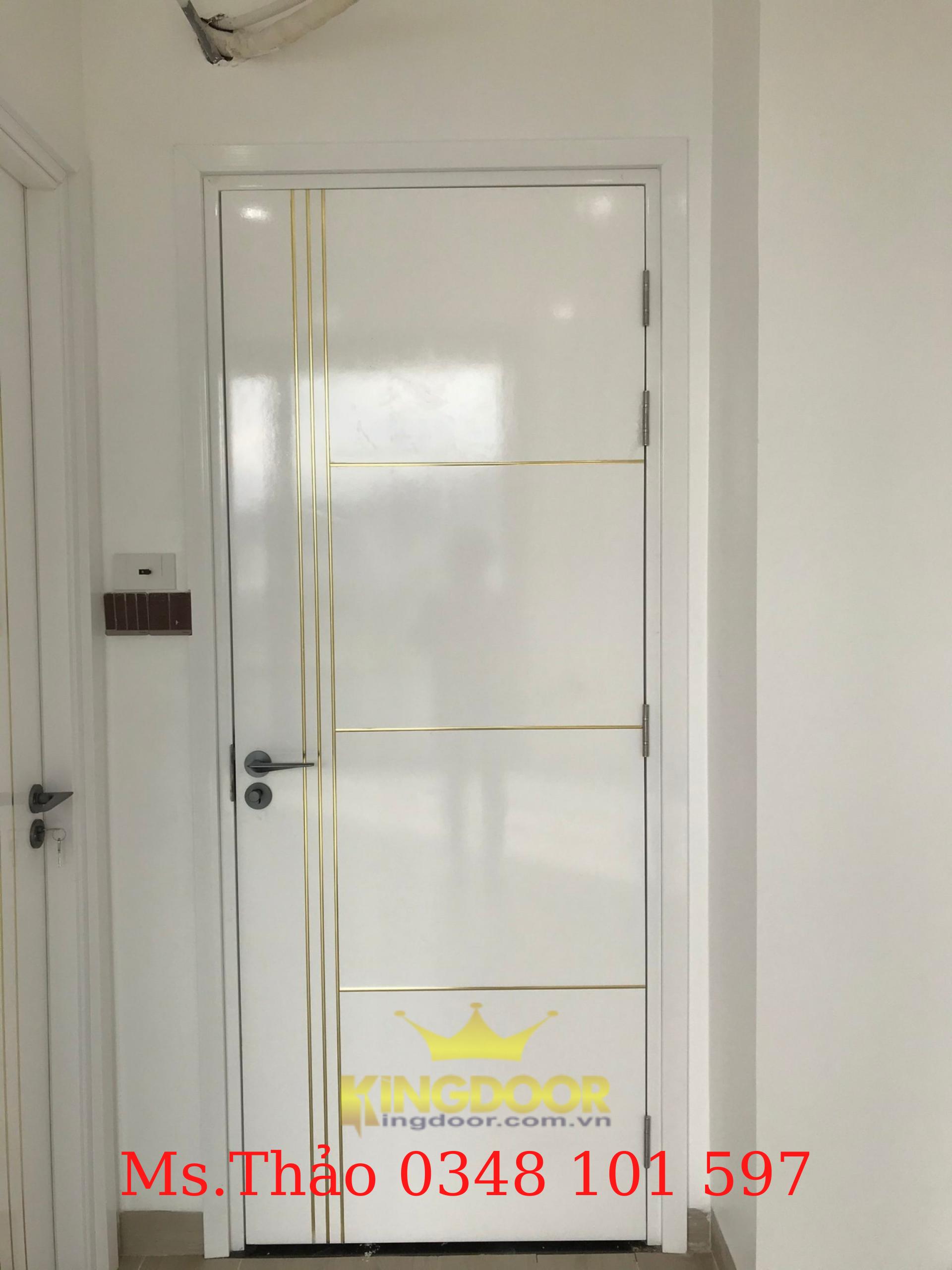 Mẫu cửa nhựa Composite sơn PU chạy chỉ nhôm